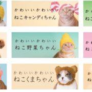 「ねこのかぶりもの」と「カービィ」のコラボが決定!『かわいい かわいい ねこのかぶりもの 星のカービィ』が2018年9月に発売決定!