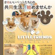イマジニアのNintendo Switch向け新作タイトル『Fit Boxing』と『LITTLE FRIENDS -DOGS & CATS-』が2018年12月に発売決定!