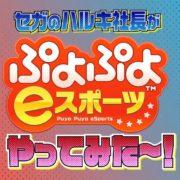 『ぷよぷよ eスポーツ』をセガサミーホールディングス「里見治紀」社長自らがプレイする動画が公開!
