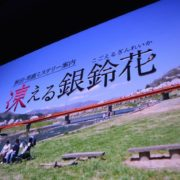 「ミステリー案内」シリーズの第二弾『秋田・男鹿ミステリー案内 凍える銀鈴花』が2020年初夏に発売決定!