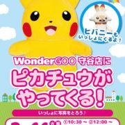 WonderGOOが「ピカチュウ&ヒバニー」に会えるイベントを開催することを発表!