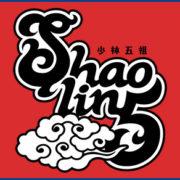 Switch用ソフト『Shaolin5 少林五組』が国内向けとして発売されることが決定!