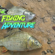 Switch版『Fishing Adventure』が海外向けとして2020年2月21日に配信決定!典型的な釣りゲーム
