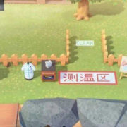 中国で『あつまれ どうぶつの森』の価格が高騰!