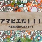 Switch用ソフト『あつまれ!金魚すくい』で妖怪「アマビエ」が登場する無料アップデートが2020年8月28日から配信開始!