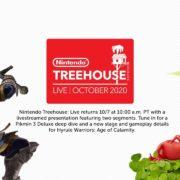 【Nintendo Treehouse: Live 2020】『ゼルダ無双 厄災の黙示録』と『ピクミン3 』編が公開!